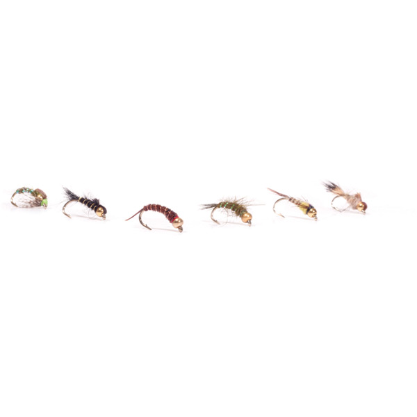 FAF Goldhead Nymphs (x6)