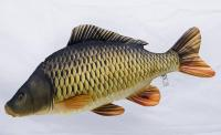 gaby-common-carp-pillow